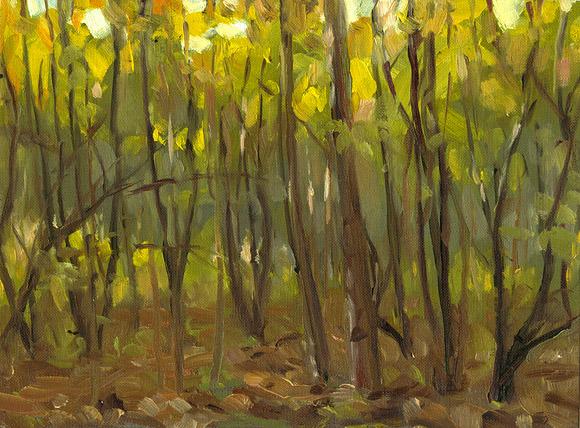Paintings (plein-air mostly)