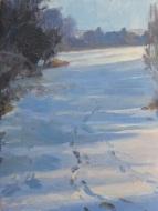 Shadows on snow 2