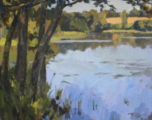 Afternoon on a pond